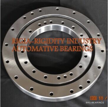 RKS.901175101001 slewing bearing