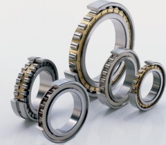 N1006-K-HS-PVPA-SP-H193 Bearing 30x55x13mm