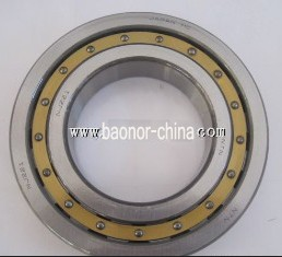 Cylindrical Roller NJ221 Bearing