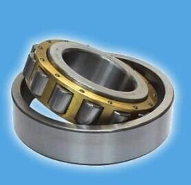 NU 2304EM Single-Row Cylindrical roller beairng 20*52*21mm