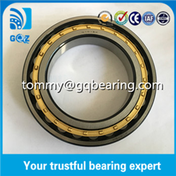 N1021-K-M1-SP Cylindrical Roller Bearing