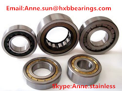 Cylindrical roller bearing MA1203TV 17*40*12mm