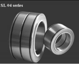SL045016PP Cylindrical Roller Bearing